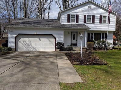 5580 Lockwood Boulevard, Youngstown, OH 44512 - #: 4066030