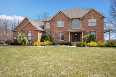 6781 Kyle Ridge Pointe, Canfield, OH 44406 - #: 4066206