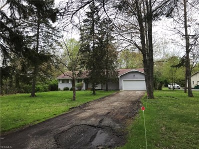 10857 Tanglewood Trail, Concord, OH 44077 - #: 4066235