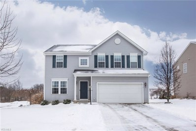 9774 Creekside Way, Streetsboro, OH 44241 - MLS#: 4066298