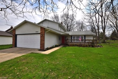 26654 Whiteway Drive, Richmond Heights, OH 44143 - #: 4066388