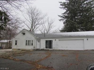 110 Townline Road, Aurora, OH 44202 - #: 4066743