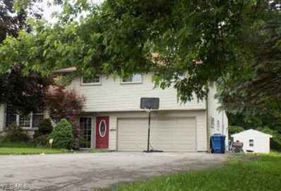 20 Henry Drive, Struthers, OH 44471 - #: 4066858
