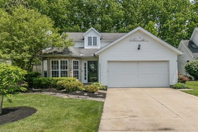 15119 Timber Ridge Drive, Middlefield, OH 44062 - #: 4066902
