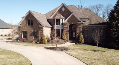 1481 Summerwood Drive, Broadview Heights, OH 44147 - #: 4067729