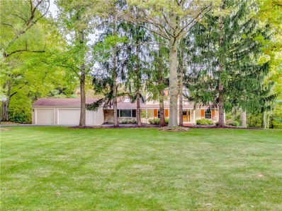 751 Spring Water Dr, Bath, OH 44333 - #: 4068104