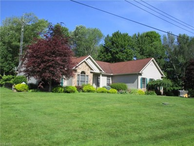 7771 Bayview Drive, Williamsfield, OH 44093 - #: 4068716