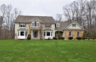 8682 Chase Drive, Chagrin Falls, OH 44023 - #: 4068742