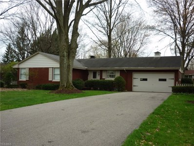 225 Sleepy Hollow Dr, Canfield, OH 44406 - MLS#: 4069229