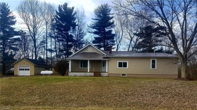45197 State Route 541, Coshocton, OH 43812 - #: 4069613