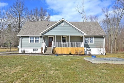 449 Champion Avenue E, Warren, OH 44483 - #: 4069685