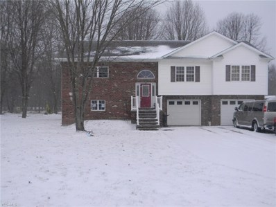 3918 State Route 82, Newton Falls, OH 44444 - #: 4069882