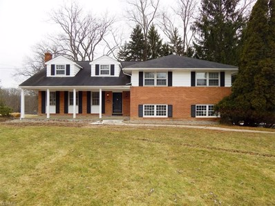 3436 Forest Lake Drive, Medina, OH 44256 - #: 4070488