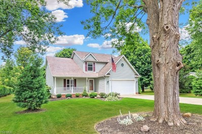 4571 S Ridge Rd, Perry, OH 44081 - #: 4070514
