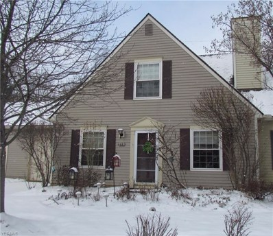 117 Marwyck Place Lane, Northfield, OH 44067 - #: 4070750