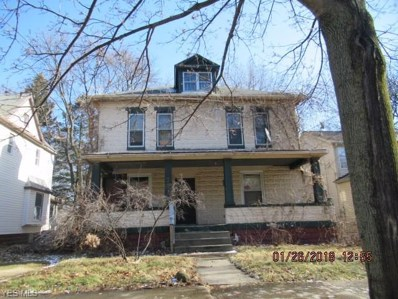 227 Rhodes Avenue, Akron, OH 44302 - #: 4070791