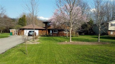 2799 Townline Rd, Madison, OH 44057 - #: 4071431