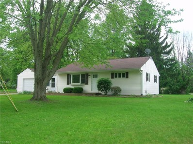 63 Circle Dr, Medina, OH 44256 - MLS#: 4072042