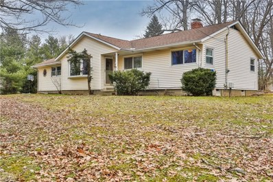 18889 Riverview Drive, Chagrin Falls, OH 44023 - #: 4072361