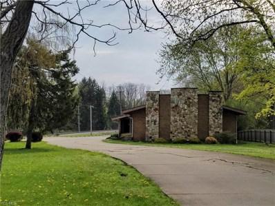 927 N Portage Path, Akron, OH 44303 - #: 4072538