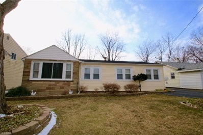 5662 Hickory Street, Mentor-on-the-Lake, OH 44060 - #: 4073132