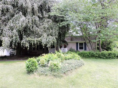 285 Crosse Road, Amherst, OH 44001 - #: 4073145