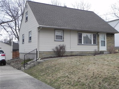 211 S Roanoke Avenue, Austintown, OH 44515 - #: 4073442