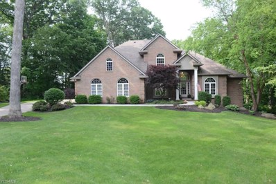 941 Woodmere, Wooster, OH 44691 - #: 4073491