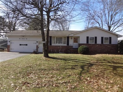 175 Wall Dr, Cortland, OH 44410 - #: 4073675