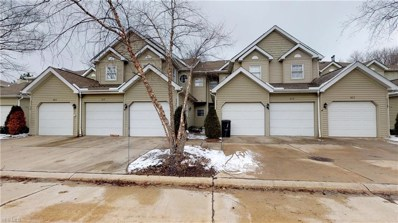 425 Eagle Trac UNIT 425, Mayfield Heights, OH 44124 - #: 4073988