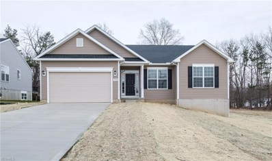 9948 Forest Valley Lane, Streetsboro, OH 44241 - #: 4073989