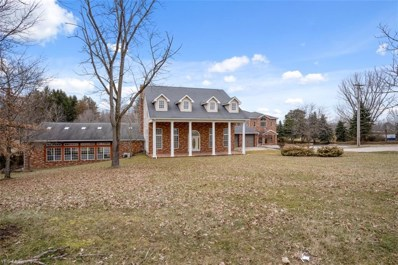 10808 Akron Canfield Road, Canfield, OH 44406 - #: 4074030