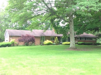 20483 Middletown Road, North Benton, OH 44449 - #: 4074477