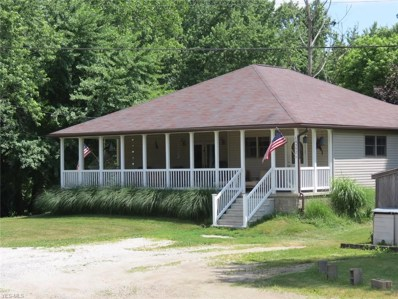14392 Delaware Road SW, Newcomerstown, OH 43832 - #: 4074490