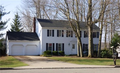 8845 Tanglewood Trail, Chagrin Falls, OH 44023 - #: 4074892