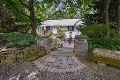 271 High St, Chagrin Falls, OH 44022 - MLS#: 4074985