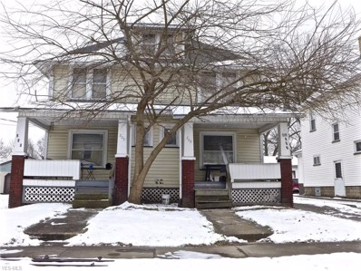 203 Sayers Avenue, Niles, OH 44446 - #: 4074991