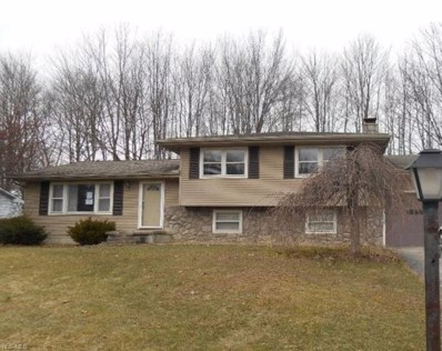 120 Country Green Drive, Youngstown, OH 44515 - #: 4075038