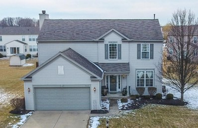 9662 Tuttle Rd, Olmsted Township, OH 44138 - #: 4075666