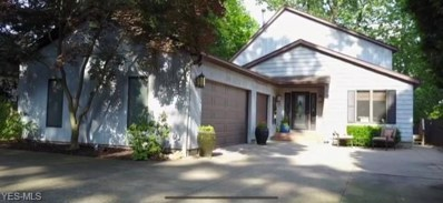 4387 Point Comfort Drive, New Franklin, OH 44319 - #: 4075921