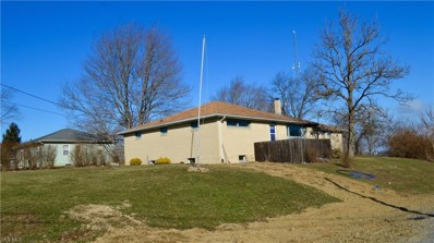 48150 Homestead Boulevard, East Liverpool, OH 43920 - #: 4075957