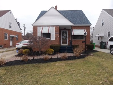 22051 Maydale Avenue, Euclid, OH 44123 - #: 4076213