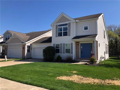 27263 Emerald Oval S, Olmsted Township, OH 44138 - #: 4076324