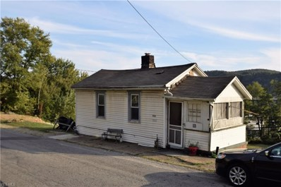834 W 9th Street, East Liverpool, OH 43920 - #: 4076620