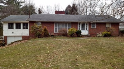 1216 High View Dr, Wadsworth, OH 44281 - #: 4076812