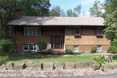 446 High Acres Drive, Chester, WV 26034 - #: 4077239