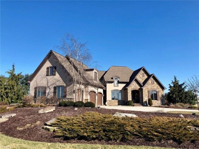 4115 Steeple Chase Place, Wooster, OH 44691 - #: 4077508