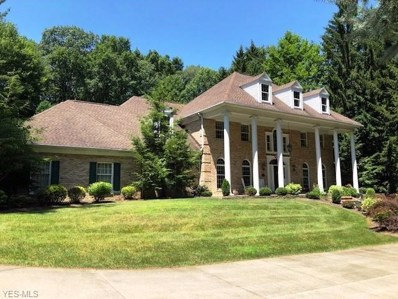 654 Pine Point Drive, Akron, OH 44333 - #: 4077799