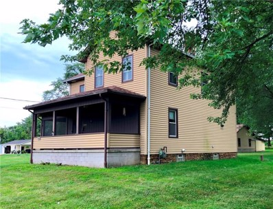 13682 Woodworth Road, New Springfield, OH 44443 - #: 4077817