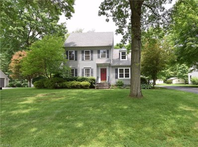 3082 Colony Drive, New Waterford, OH 44445 - #: 4078001